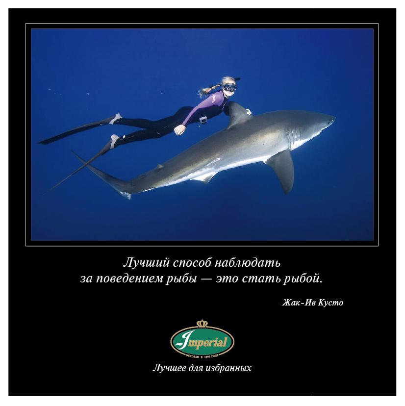 В этот день 12 октября 2016 года состоялась премьера фильма Жерома Салля «Одиссея», рассказывающего о знаменитом исследователе океана Жаке-Иве Кусто.